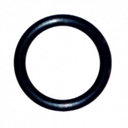 O-ring ricambio